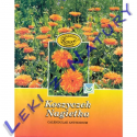 Nagietek Kwiat, Kwiat Nagietka 25g Kawon