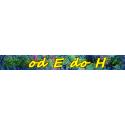 Zioła Jednorodne E do H